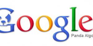Google Panda Cosa è e Quando arriva in Italia