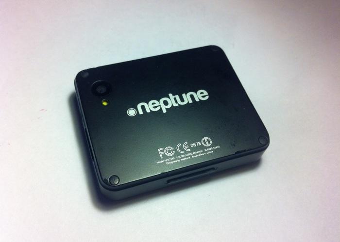 neptune-pine-2