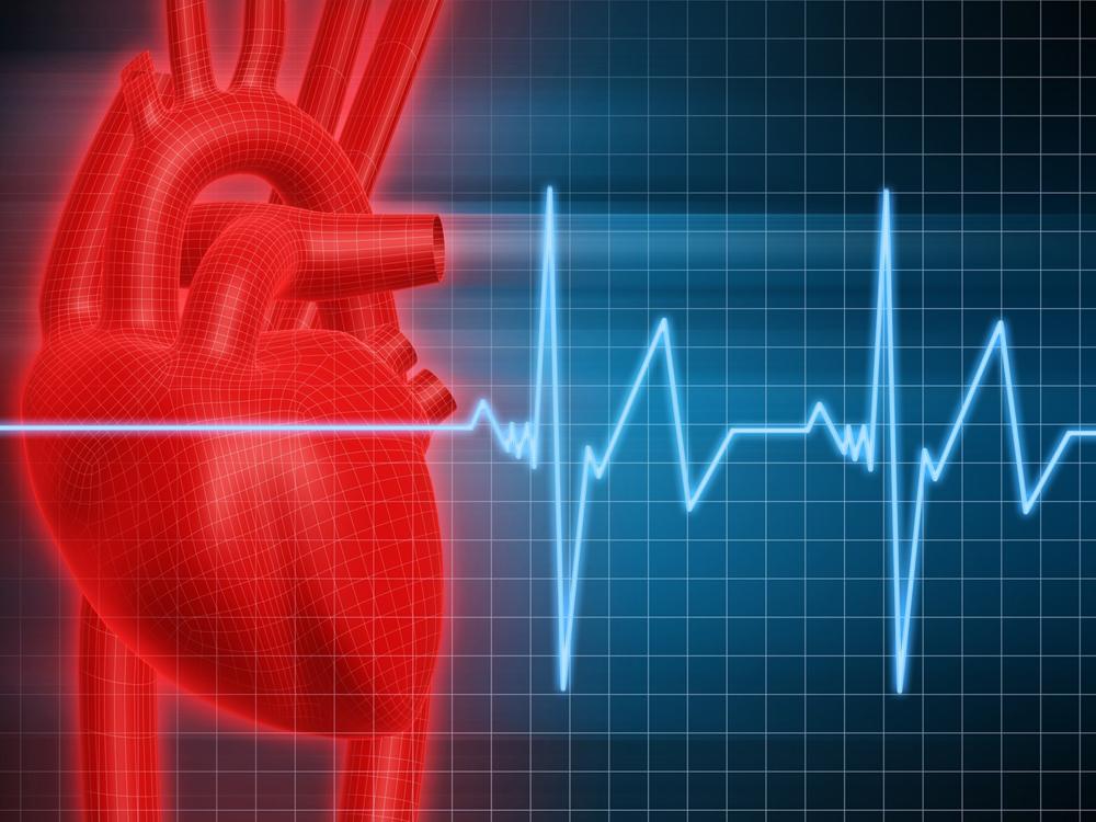 cardio-endurance